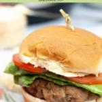 instant pot turkey burger pin